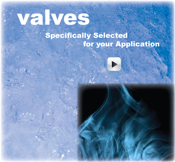 Click for Valve Products
