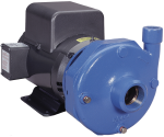 Goulds Xylem 3656-3756 S End Suction Flanged Pumps